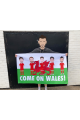 Wales Football Flag 5ftx3ft Welsh Dragon Come On Wales Euros 20-21 High Quality